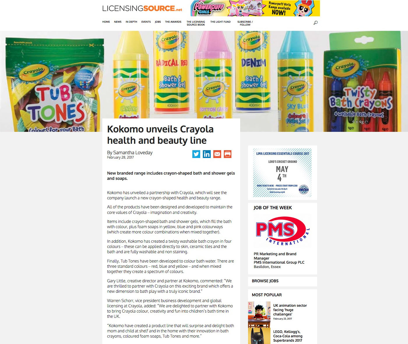 crayola write up